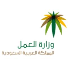 وزارة العمل تبدأ تطبيق المرحلة الثامنة من برنامج حماية الأجور السبت القادم