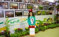 مهرجان الورد والفاكهة في تبوك يواصل فعالياته